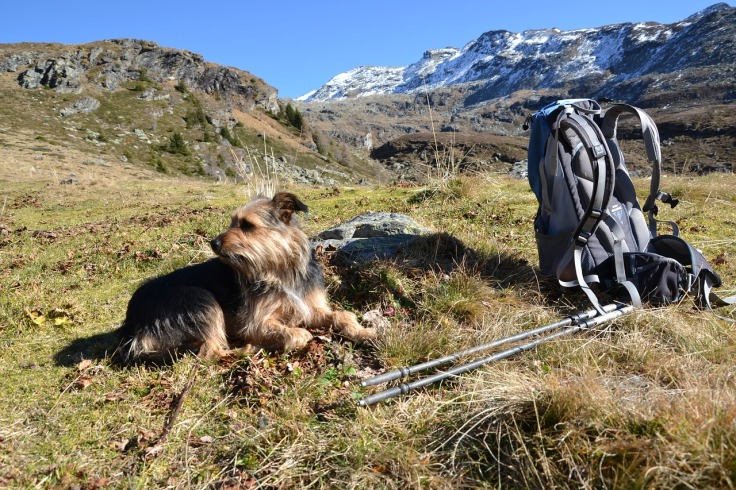 hiking-1129499_1280