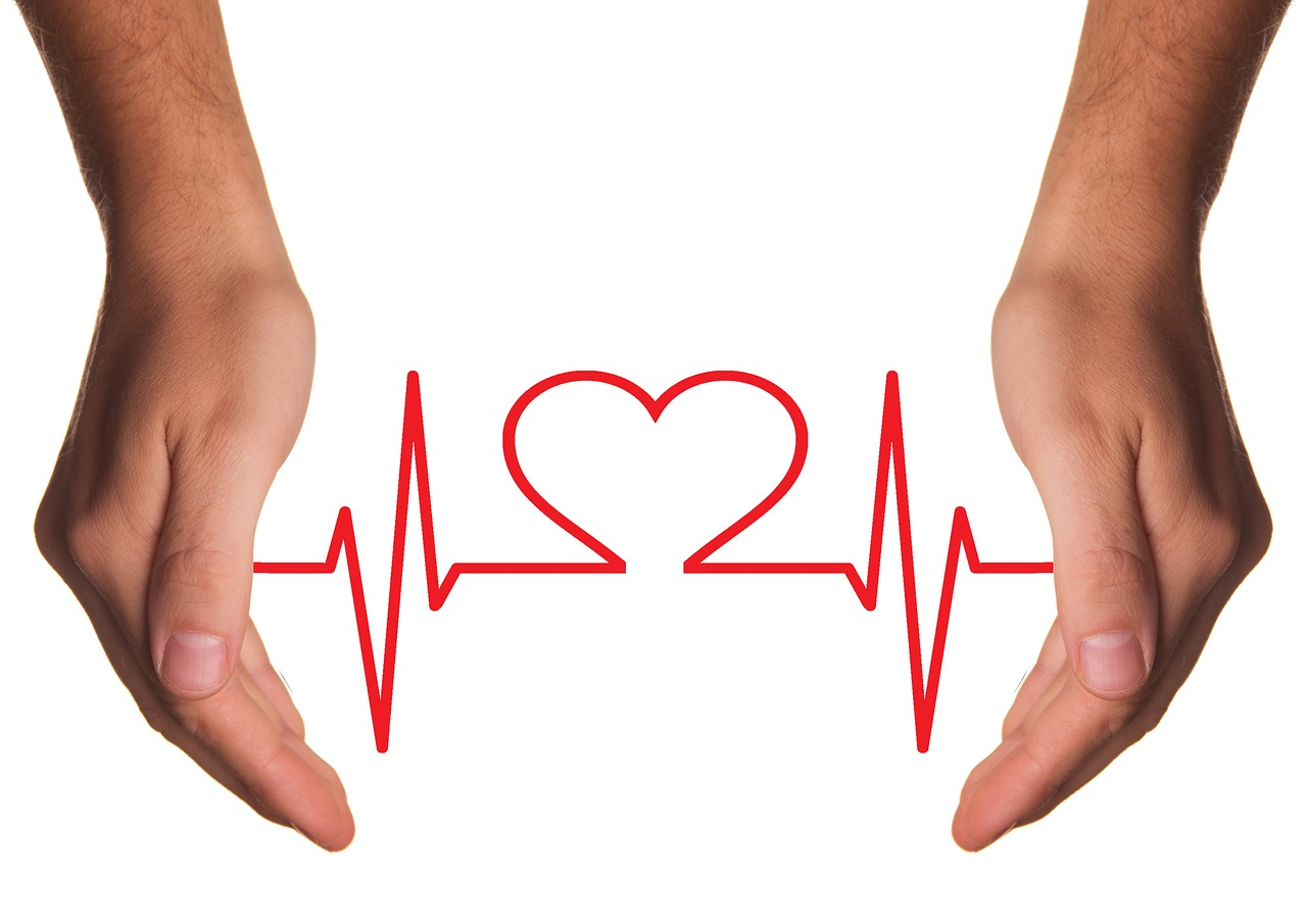 Herzerkrankung beim Hund – Arten, Ursachen, Therapien